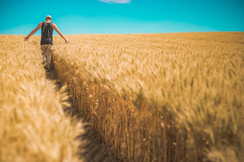 Grainindurance